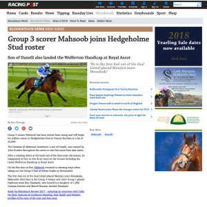 Racing Post article on Mahsoob