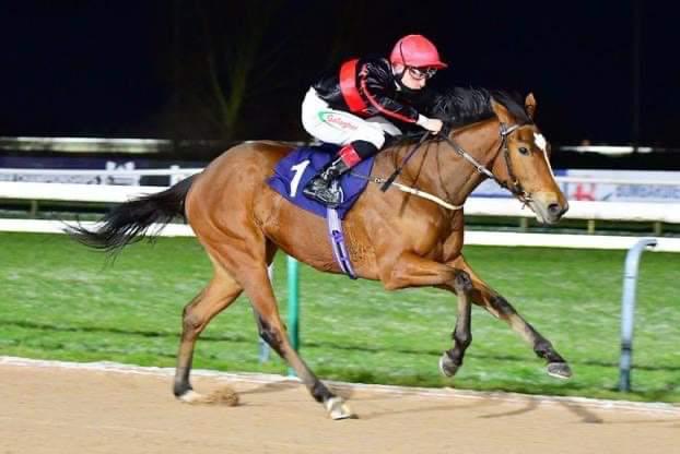 Stallion-Intrinsic-third-winner-2021
